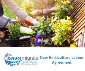Australian businesses in the horticulture industry can apply for the new Horticulture Industry Labour Agreement